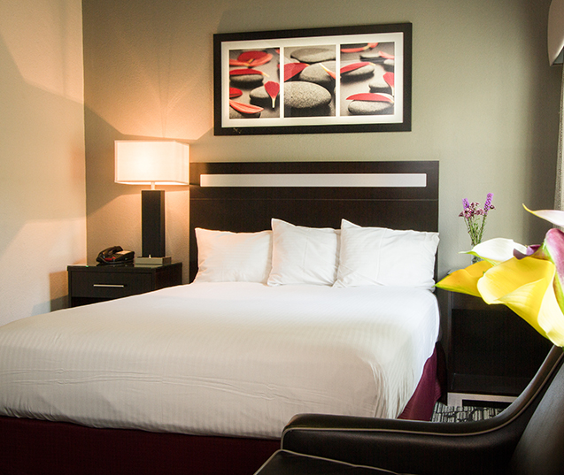 ESCAPE, RELAX AND IMMERSE YOURSELF IN THE ABSOLUTE COMFORT OF OUR GUESTROOMS